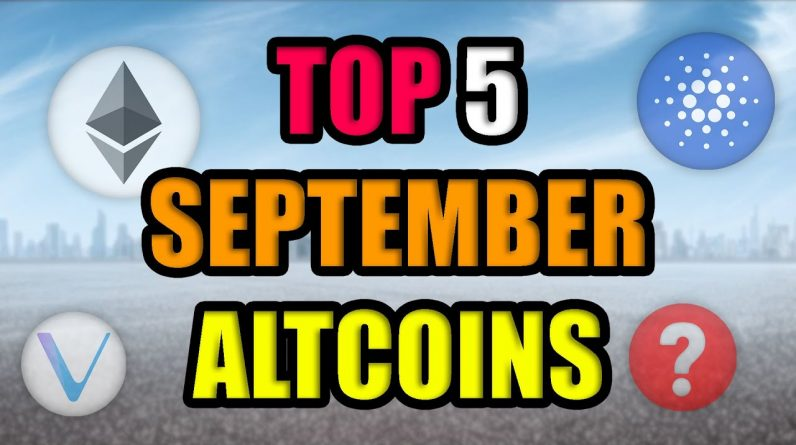 Top Blue Chip Altcoins with Most Potential in September 2021! (Best Cryptocurrency Investments)